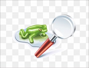 Magnifying Glass Frog - World AIDS Day Teacher Red Ribbon PNG