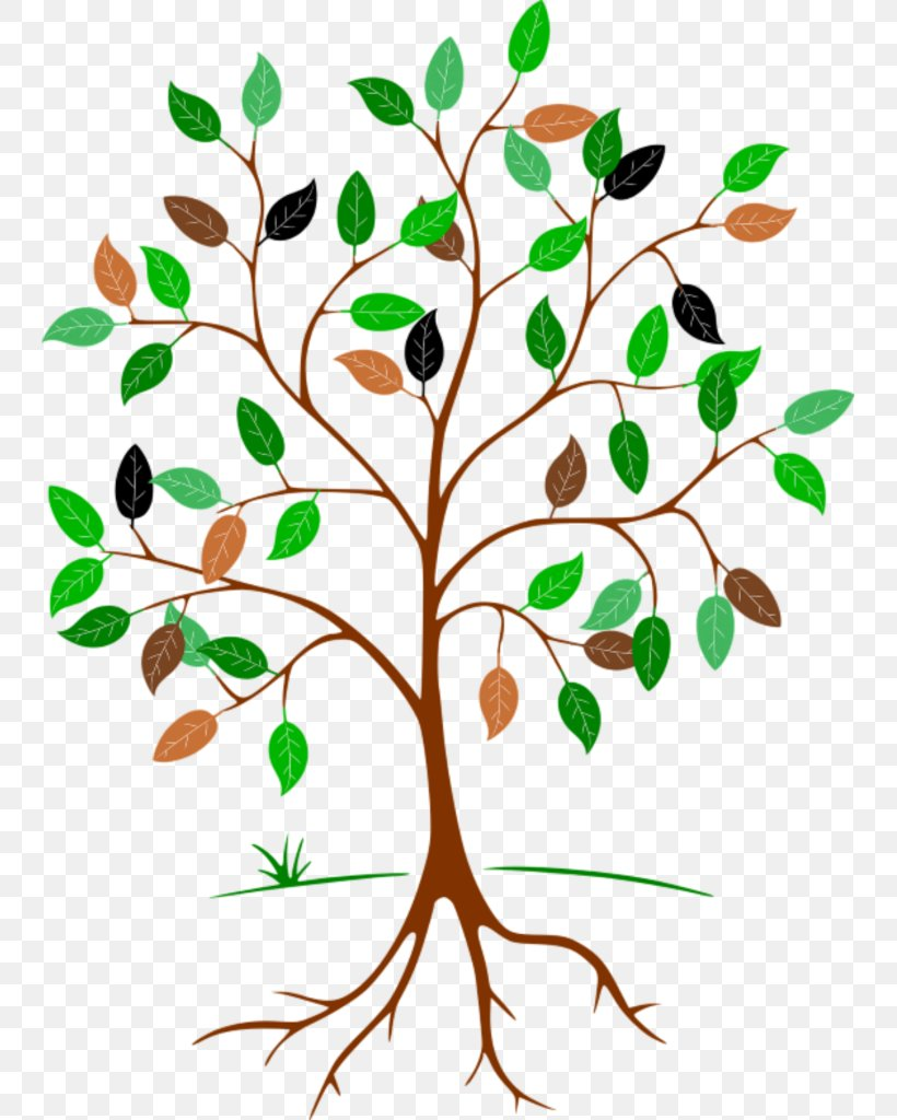 Tree Images Clip Art | Tree images, Family tree clipart, Spring tree