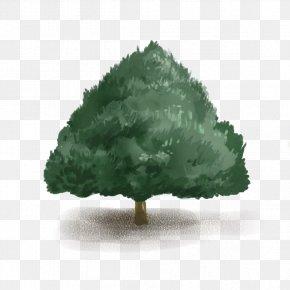 Cartoon Dark Green Tree - Green Tree Google Images Computer File PNG