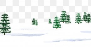 Snow On The Tree - Christmas Tree Snow Winter Icon PNG