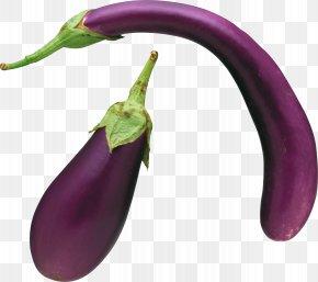 Eggplant Images Download - Eggplant Serrano Pepper Clip Art PNG