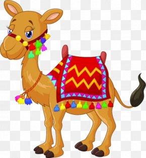 Cartoon Horse Material - Bactrian Camel Royalty-free Stock Photography Clip Art PNG