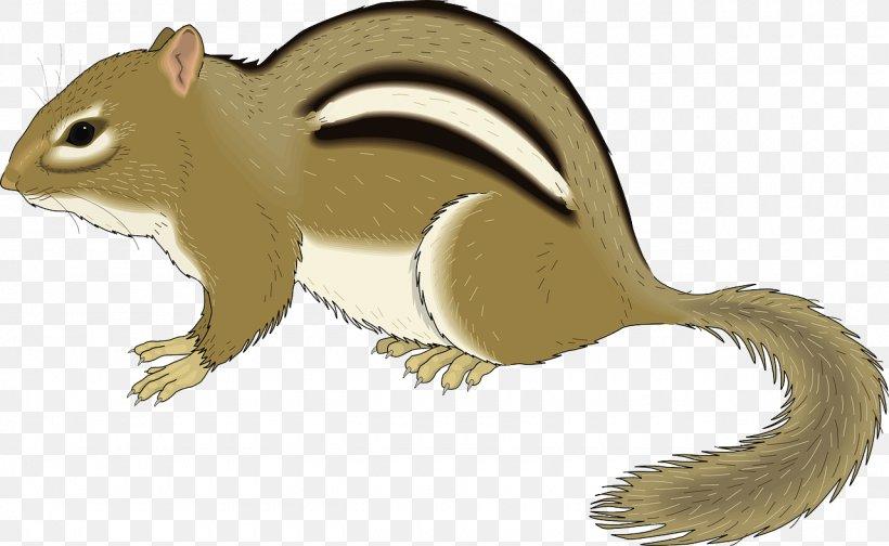 Chipmunk Squirrel Rodent Clip Art, PNG, 1280x787px, Chipmunk, Cartoon, Chip N Dale, Fauna, Illustration Download Free