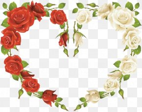 Rose - Rose Picture Frame Red Clip Art PNG