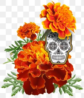 Marigold - Mexican Marigold Flower Day Of The Dead Stock Photography Calendula Officinalis PNG