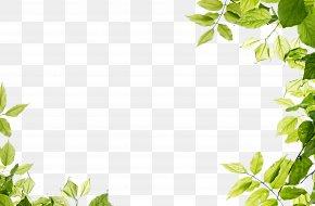 Green Leaves Frame - Green Leaf PNG
