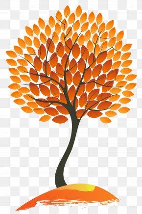 Autumn Tree Clipart Image - Autumn Leaf Color Tree Clip Art PNG