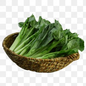 Into The Baskets Of Green Kale Turnips - Chinese Broccoli Cabbage Brassica Juncea Rutabaga PNG