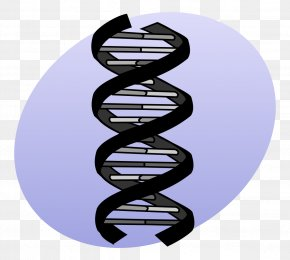 DNA - DNA Sequencing Genetics Mutation PNG