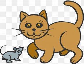 Cat - Cat Kitten Animal Mammal Carnivora PNG