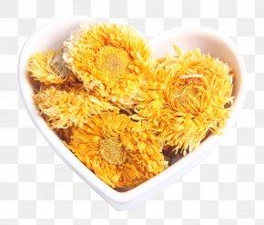 Calendula Chrysanthemum Tea - Chrysanthemum Tea Calendula Officinalis Flowering Tea PNG