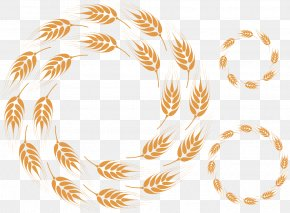 Three Round Buckle Creative Wheat HD Free - Common Wheat Bread Cereal Circle PNG