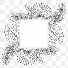 Tropical Plants - Tropics Plant Sketch PNG