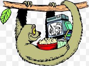 Monkey Watching TV - Sloth Generalization Clip Art PNG