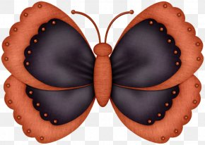 Butterfly - Butterfly Insect Art Moth Caterpillar PNG