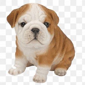 Dogs - French Bulldog Golden Retriever Labrador Retriever Pug PNG