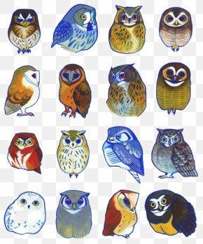 Owl - Owl Bird Drawing Illustration PNG