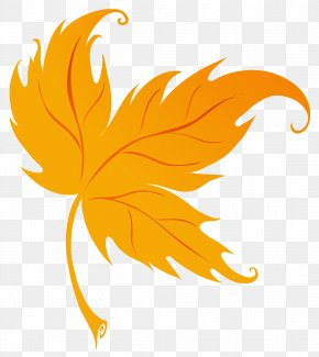 Fall Leaf Clipart Image - Autumn Leaf Color Clip Art PNG