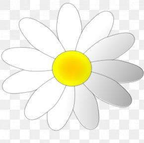 Daisy Flower Outline - Common Daisy Clip Art PNG
