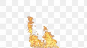 Fire Image - Light Flame Fire Combustion PNG