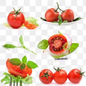 A Large Collection Of Tomato - Cherry Tomato Vegetable Auglis Salad Basil PNG