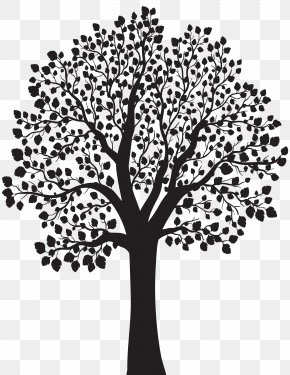 Tree Silhouette Clip Art Image - Tree Silhouette Illustration PNG