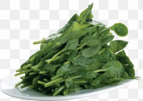A Kale - Chinese Cuisine Chinese Broccoli Kale Vegetable PNG