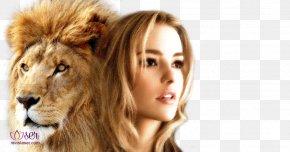 Lion - Lion Cougar Big Cat Desktop Wallpaper IMac PNG