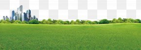 The Green Wilderness Of The City - Crop Biome Grassland Rural Area Land Lot PNG