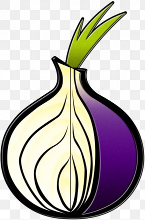 Onion - Tor Browser .onion Anonymity Onion Routing PNG