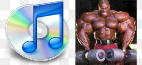 Bodybuilding - Bodybuilding Exercise Physical Fitness Fitness Centre Muscle PNG