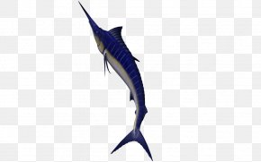 Seabed Animals - Swordfish Animal Seabed PNG