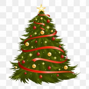 Christmas Tree - Christmas Tree Christmas Ornament Christmas Decoration Clip Art PNG