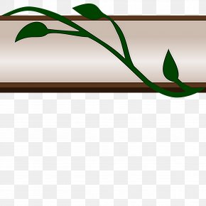 Branch Plant Stem - Green Leaf Plant Flower Plant Stem PNG