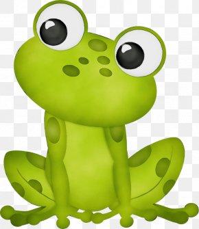 Animal Figure Tree Frog - Green Clip Art Frog True Frog Cartoon PNG