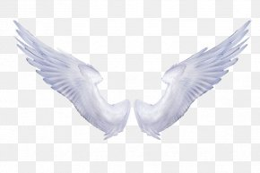 Black And White Angels - Wing Angel Clip Art PNG