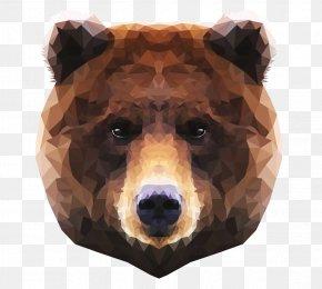 Bear - Brown Bear Polar Bear Moose Grizzly Bear PNG