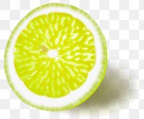 Yellow Background - Lemon Grapefruit Citron Clip Art PNG