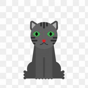 Cute Black Cat - Korat Kitten Whiskers Black Cat Hello Kitty PNG