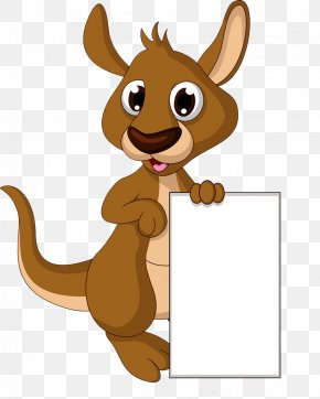 Kangaroo Bottom Box - Cartoon Drawing Kangaroo Illustration PNG