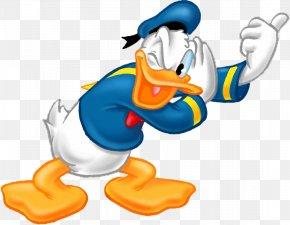 Donald Duck - Donald Duck Daisy Duck Minnie Mouse Clip Art PNG