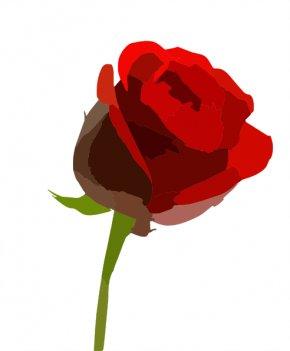 Rose Vector - Rose Cut Flowers Drawing Clip Art PNG