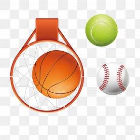 Basketball Baseball Softball Vector Material - Softball Basketball Euclidean Vector PNG
