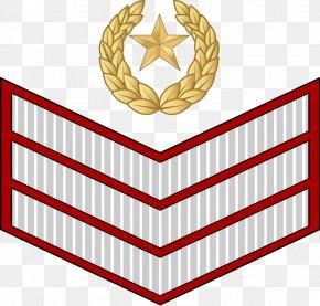 Pakistan Army - Army Ranks And Insignia Of Pakistan Military Rank British Army Officer Rank Insignia Havildar Pakistan Army PNG