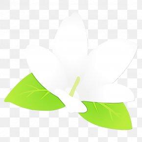 Tree Logo - Green Leaf White Plant Logo PNG