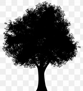 Tree Silhouette Clip Art Image - Silhouette Tree Woman Of The Promise Clip Art PNG