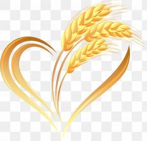 Creative Wheat Heart - Wheat Logo Ear PNG