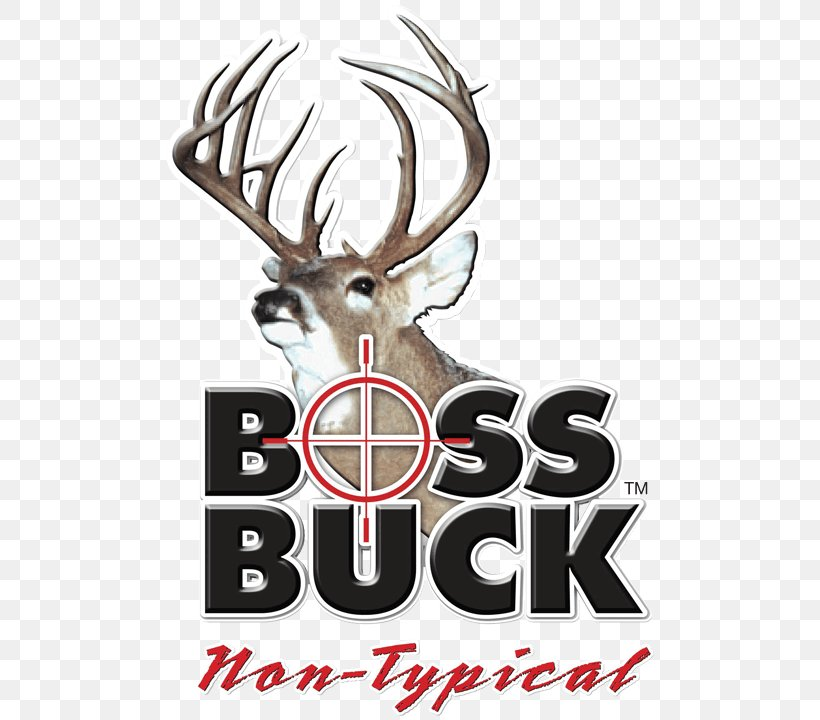 White-tailed Deer Boss Buck Deer Hunting, PNG, 720x720px, Deer, Antler, Biggame Hunting, Boss Buck, Brand Download Free