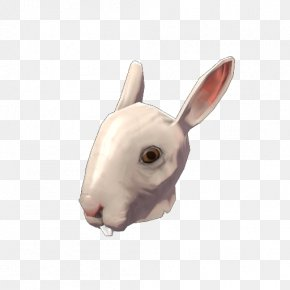 Rabbit - Domestic Rabbit Team Fortress 2 Hare Snout PNG