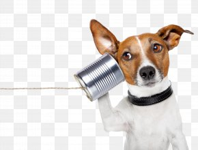 Dog - YouTube Conversation Communication Telephone Call Information PNG